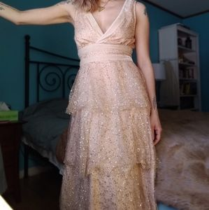 NWOT Lulu's sparkling champagne gown